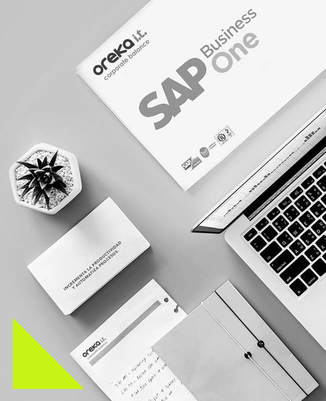 eteekin sap business one