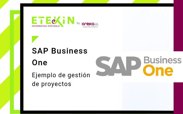 Sap Business One Ejemplo De Gestión De Proyecto