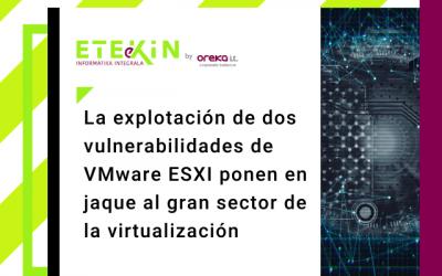 La explotación de dos vulnerabilidades de VMware ESXI ponen en jaque al gran sector de la virtualización