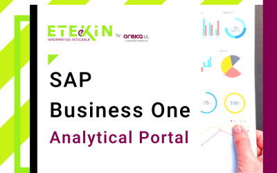 SAP Business One Analytical Portal