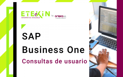 SAP Business One – Consultas de usuario