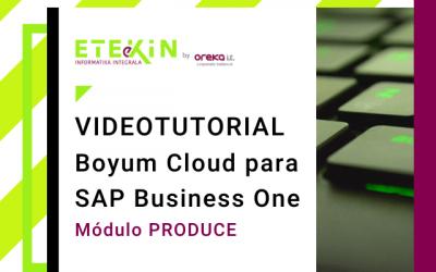 Boyum Cloud para SAP BUSINESS ONE – Modulo Produce